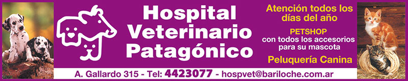 Hospital Veterinario Patagonico